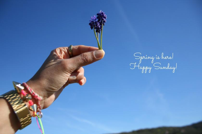 springhere.jpg